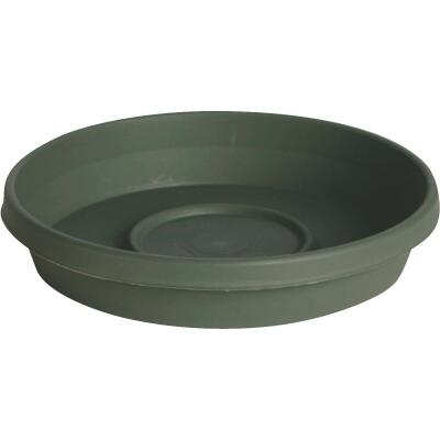 Bloem Terra Living Green 6 In. Plastic Flower Pot Saucer