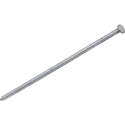 Do it 40d x 5 In. 7 ga Hot Galvanized Pole Barn Nails (140 Ct., 5 Lb.)